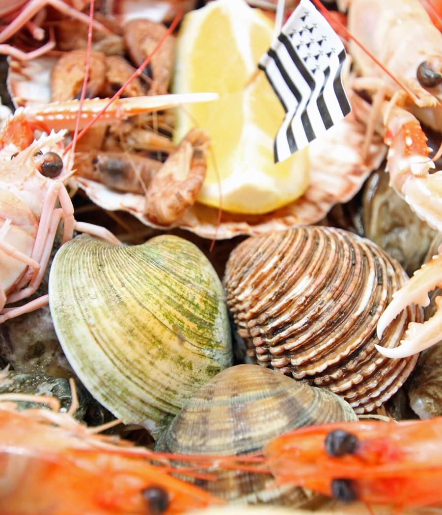 Crustacés (1) tiny